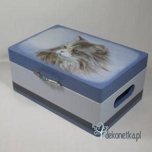 Pudełko z kotem maine coon z uchwytem